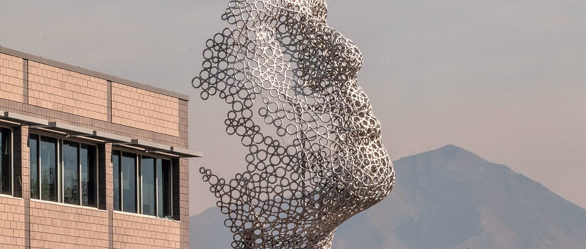 A mesh-looking statue of a face.
