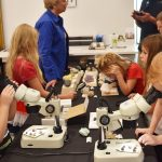 Science camp students examine minerals, bugs and shells as part of the Natural History Museum of Utah's Traveling Treasures exhibit in Springville.