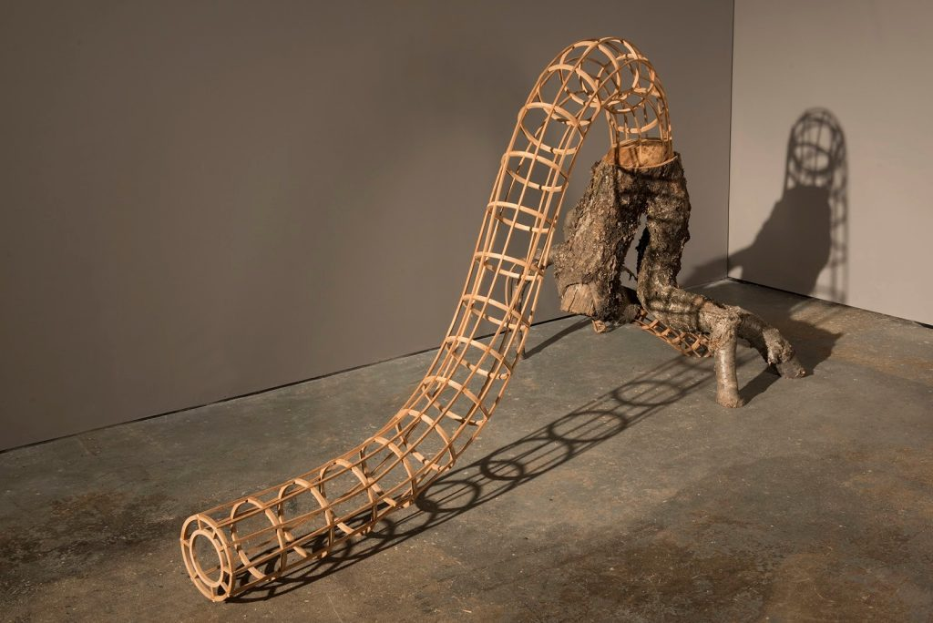 A wooden artwork consisting of a tubular structure that ends in a tree trunk