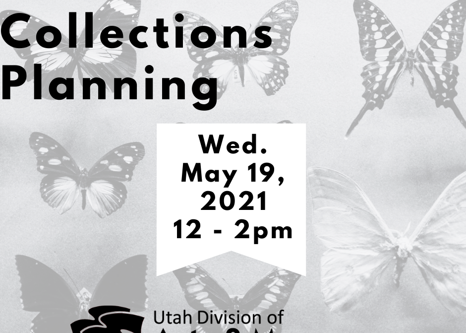 """A graphic that reads, """"Museum Skills Lab Collections Planning. Wed. May 19, 2021 12-2 p.m."""""""